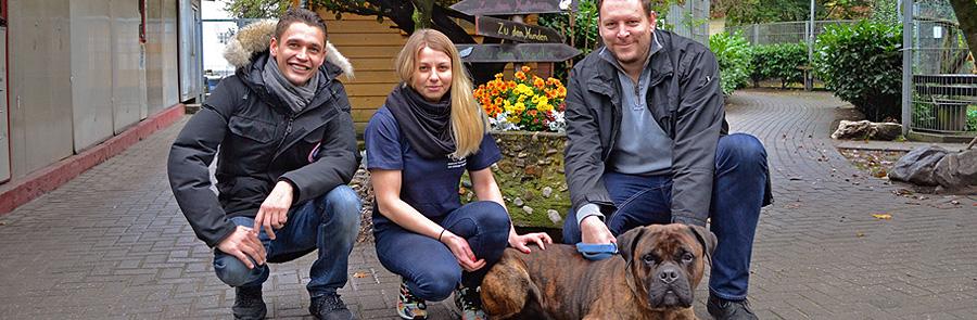 Artikelbild_Tierheim_Vorschau